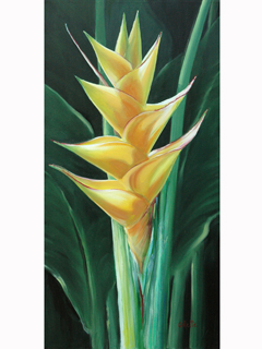 Heliconia by Carol Collette